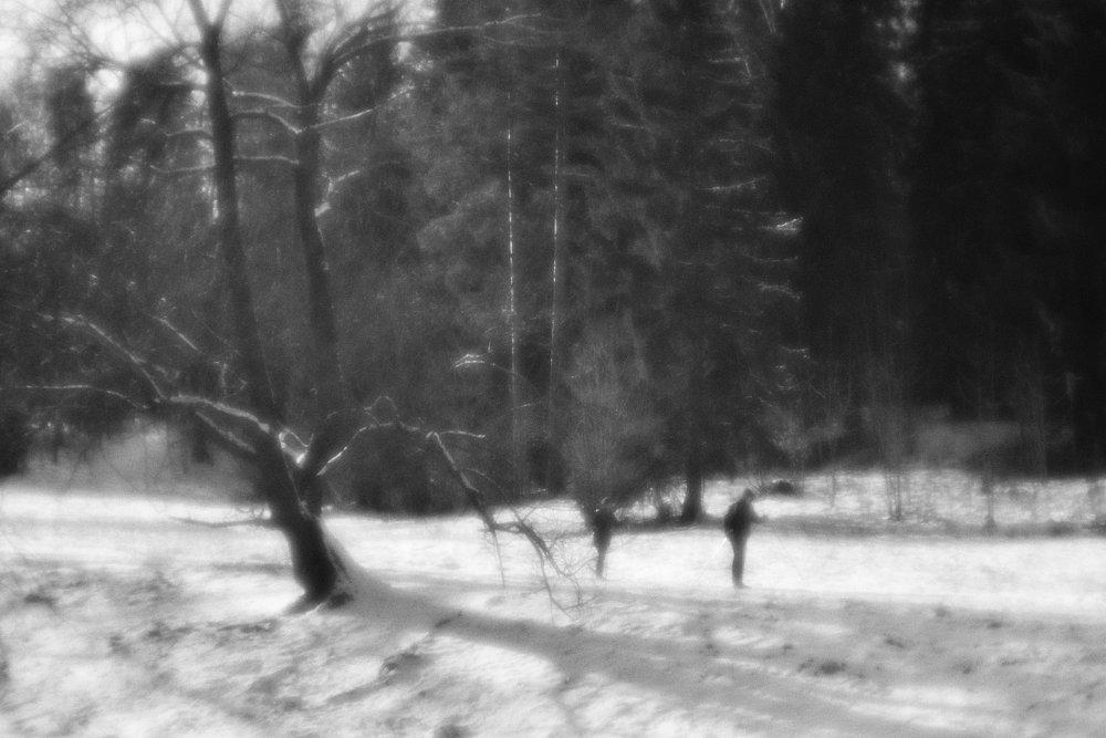 monoclemania-pavlovsk-park-06.jpg