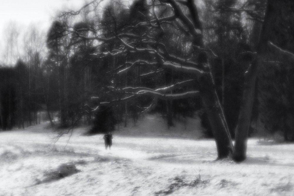 monoclemania-pavlovsk-park-07.jpg