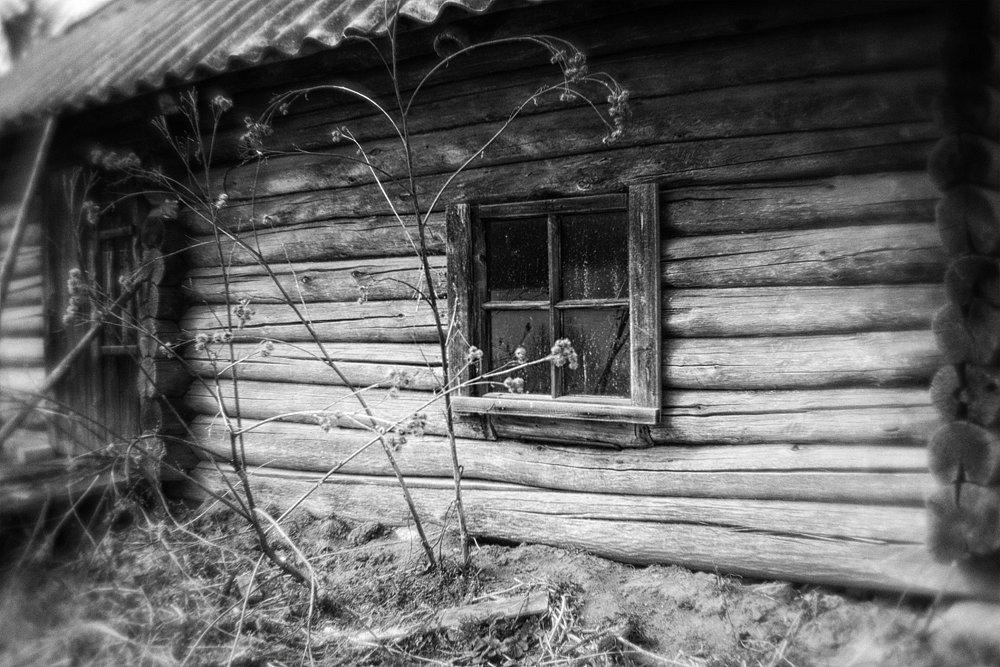 monoclemania-pskov-province-002.jpg