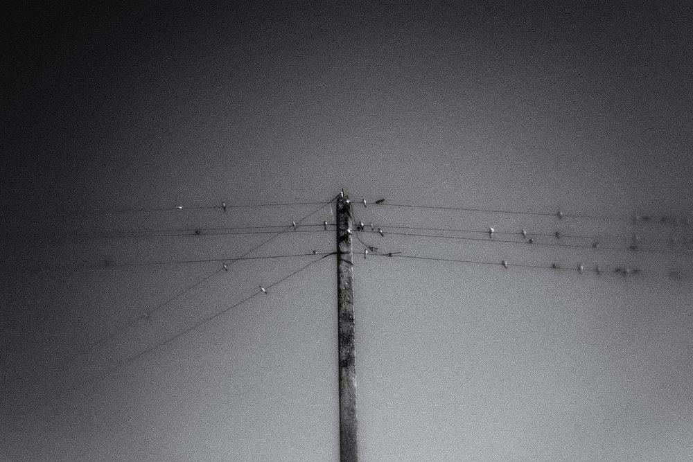 monoclemania-pskov-province-042.jpg