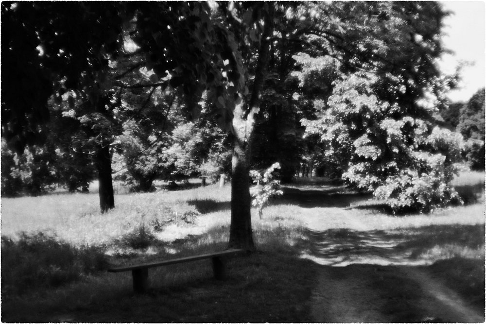 monoclemania-Rimsky-Korsakov-museum-10.jpg