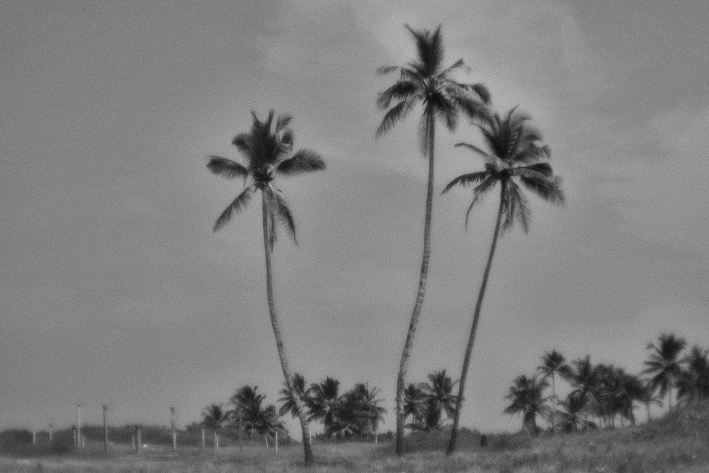 monoclemania-India-07.jpg