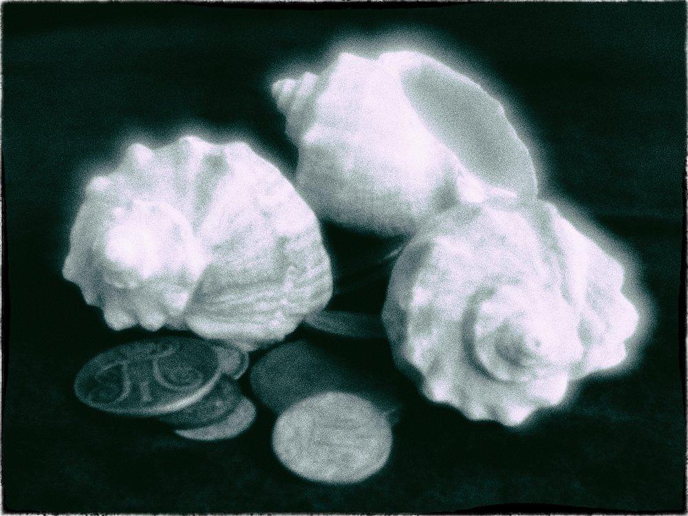 monoclemania-Still-Life-5.jpg