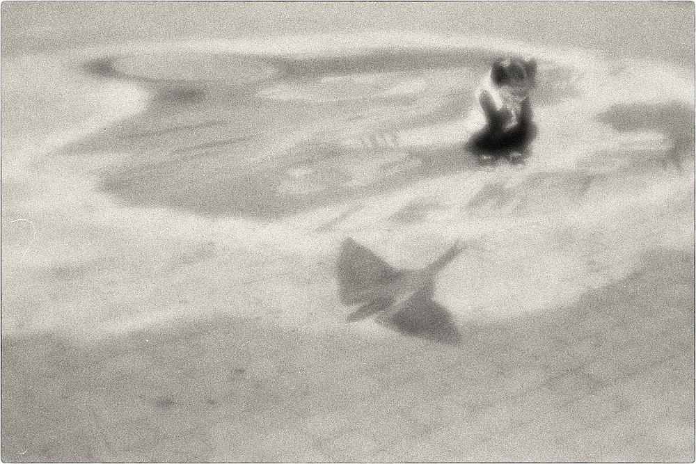 monoclemania-Baku-13.jpg