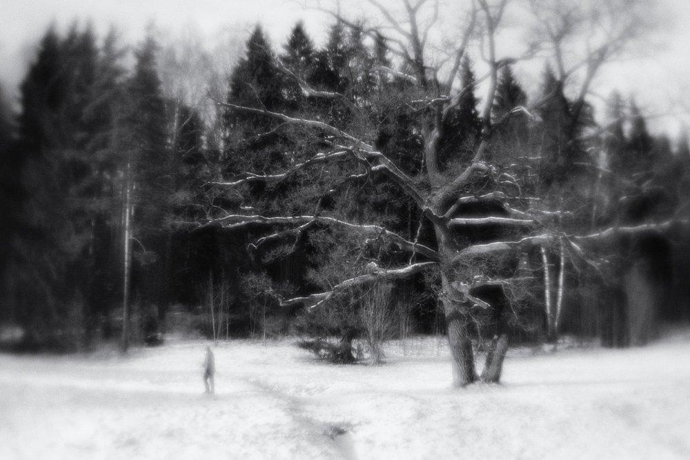 monoclemania-pavlovsk-park-09.jpg