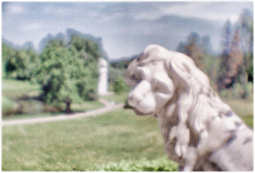 monoclemania-pavlovsk-park-color-5.jpg
