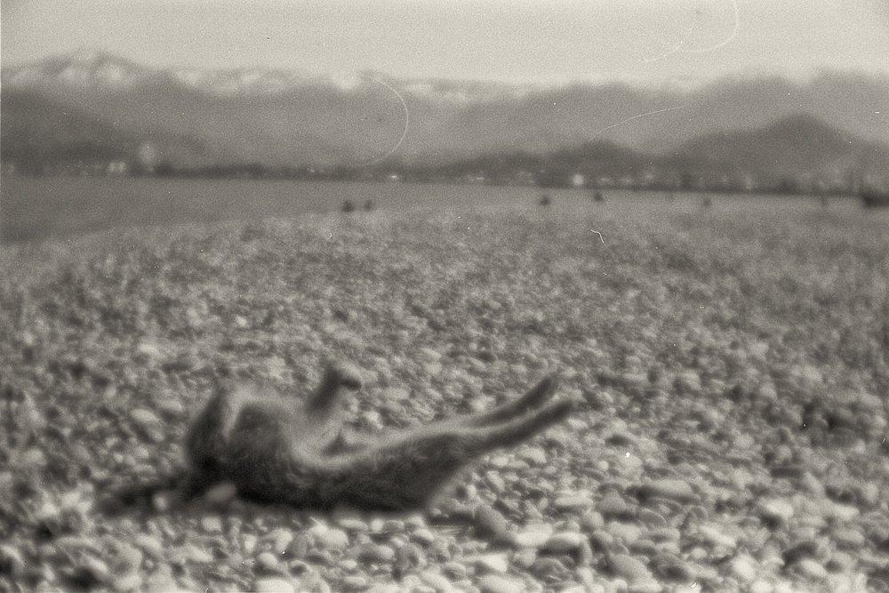 monoclemania-batumi-13.jpg